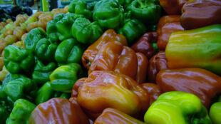 Czarna papryka, niebieskie ziemniaki... Poznajcie całkiem nowe warzywa